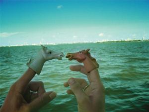 seahorses, obvsly