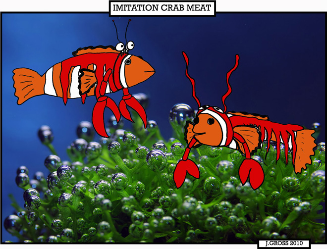 imitation crab meat